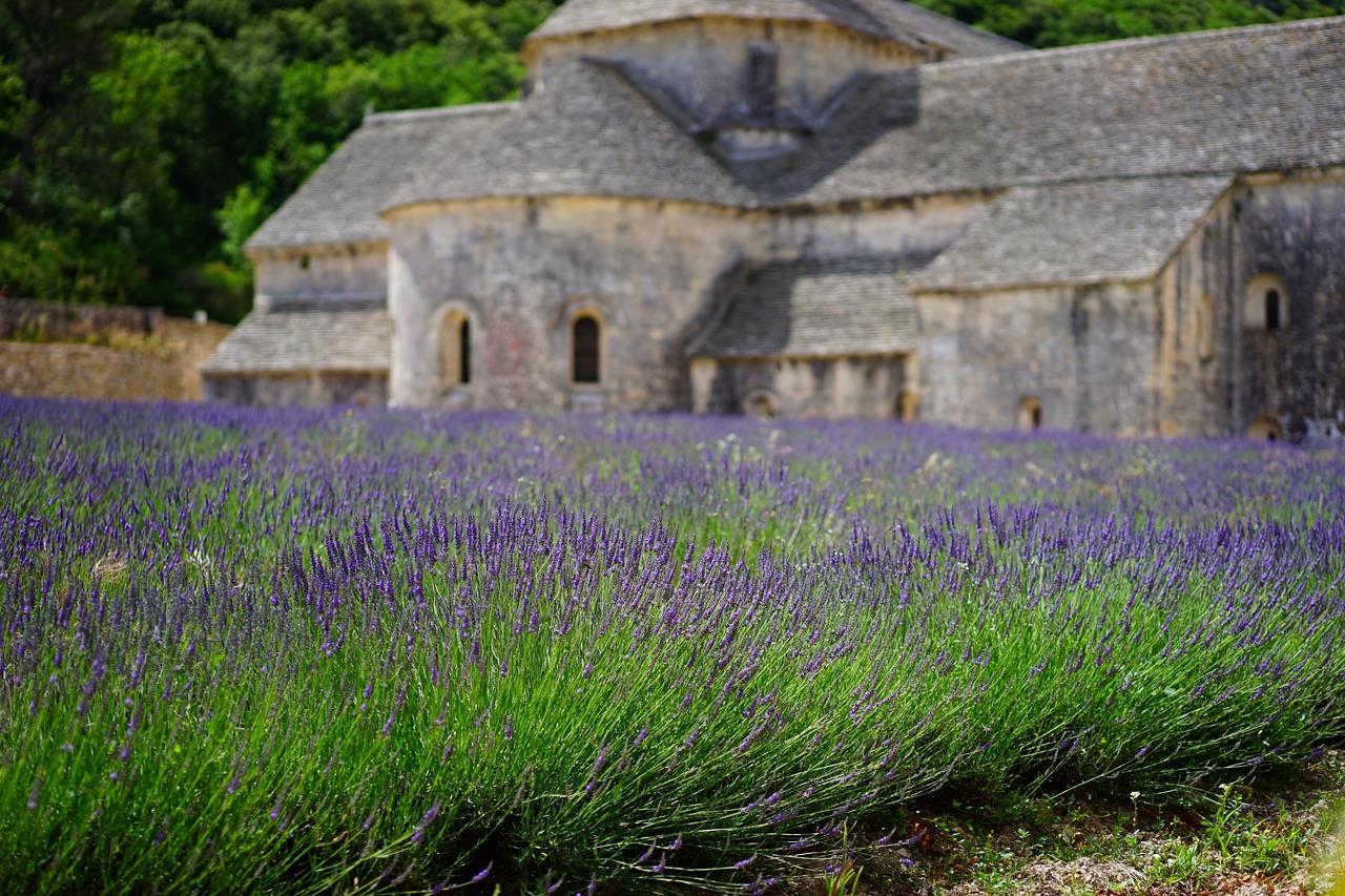 Sehnsuchtsland Provence |16.03.19